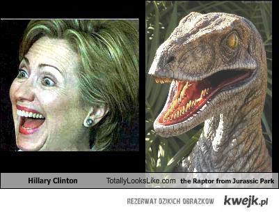 Hillary Clinton vs Raptor