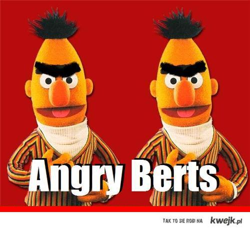 angry berts