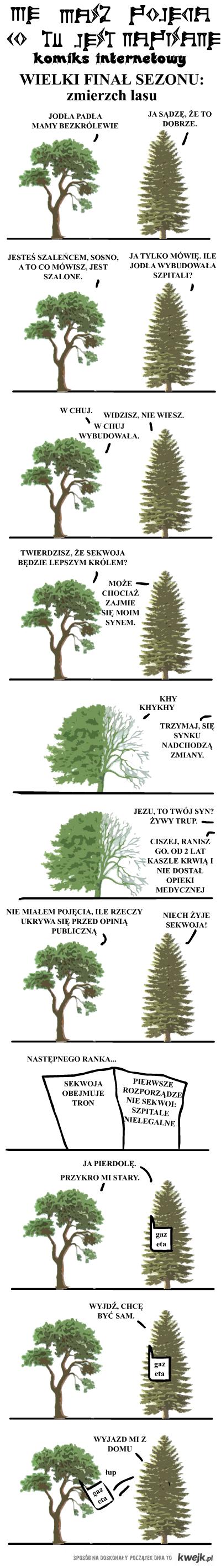 Zmierzch lasu