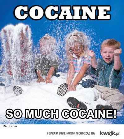 Kokaina, dużo kokainy