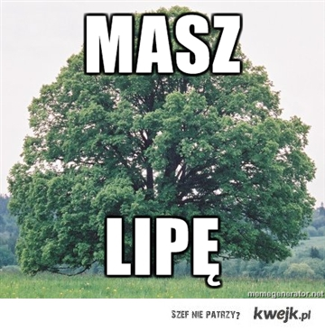 MASZ LIPE
