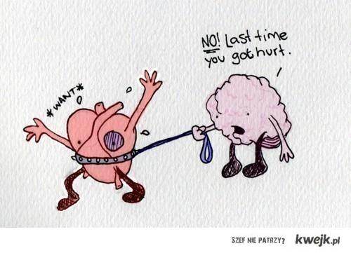 Heart - Brain