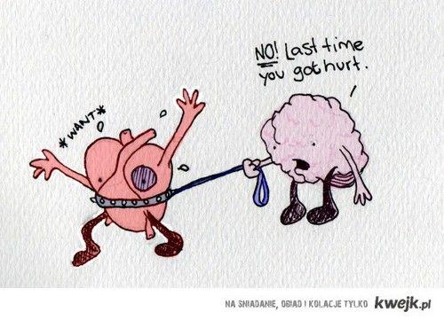 serce mozg historia prawdziwa