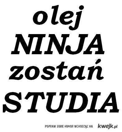 olej ninja zostan studia