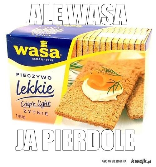 ale wasa
