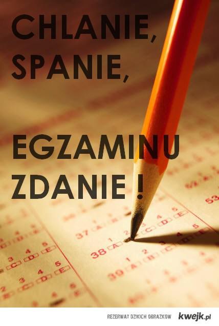 Chlanie, spanie, egzaminu zdanie !