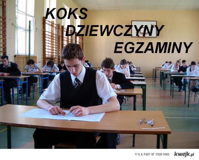 koks,dziewczyny,egzaminy