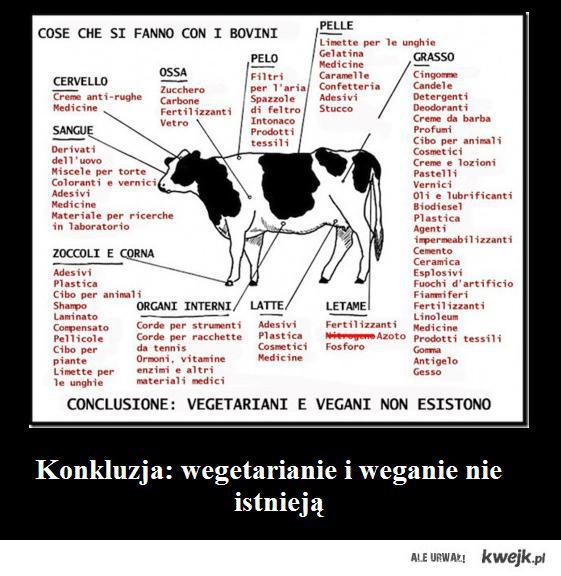 weganie i wegetarianie nie istnieja