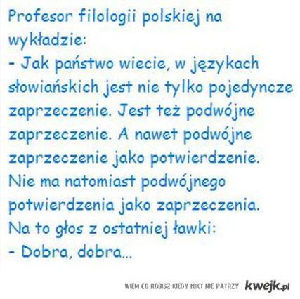 Bogaty język polski