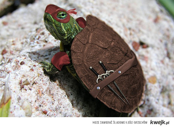ninja_turtle