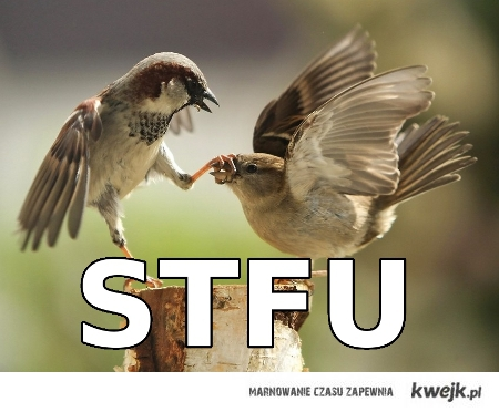 Two birds having different opinions