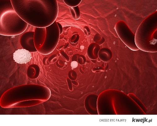 Grupę krwi AB ma tylko ok. 14 % ludzi na świecie.  Z tego wynika ze jestesmy zajebisci!