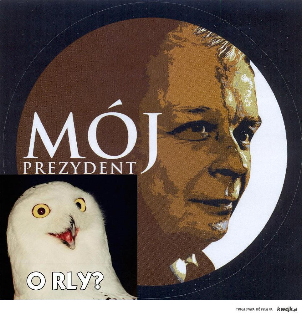 mój prezydent