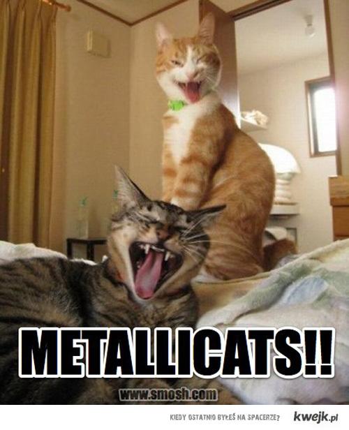 Metallicats!