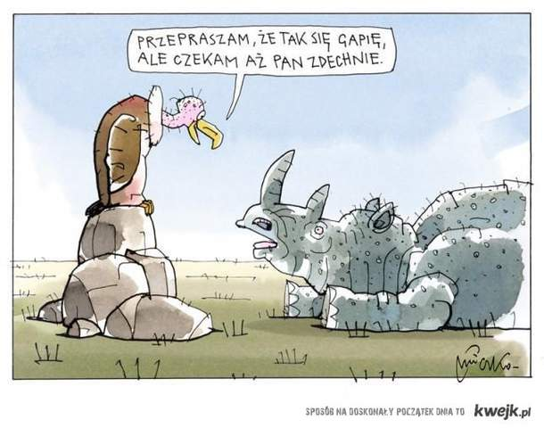 Kultura w świecie zwierząt :))