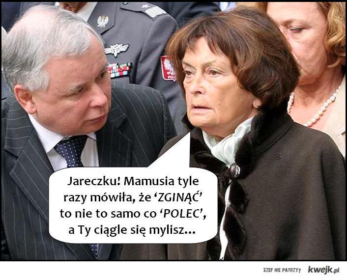 POLEC-ZGINĄĆ
