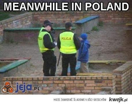 Tymczasem w Polsce...