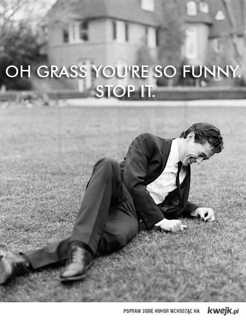funny grass