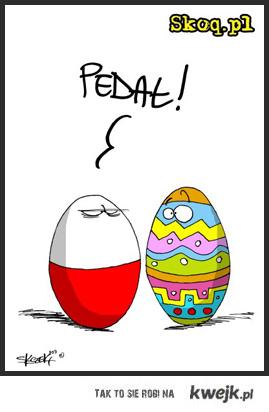 pedalskie jajka na wielkanoc