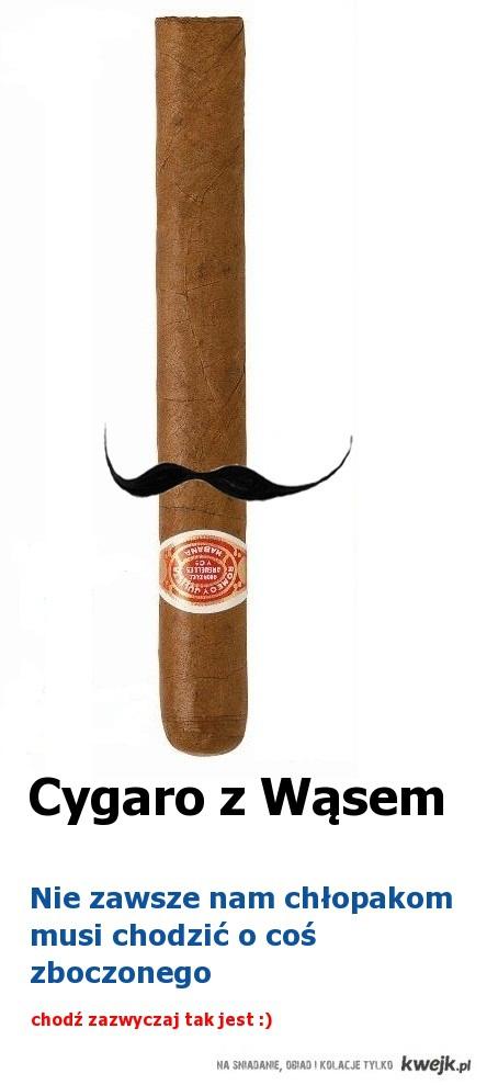 Cygaro z Wąsem