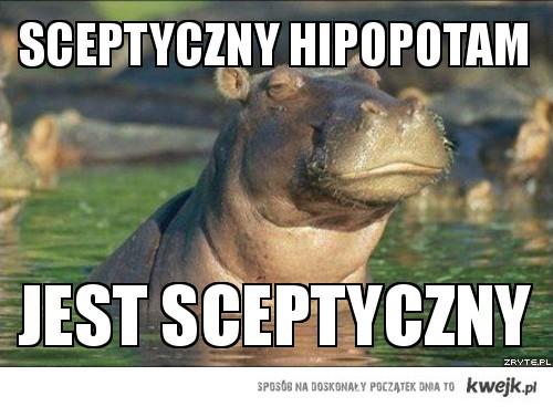 Sceptyczny hipopotam