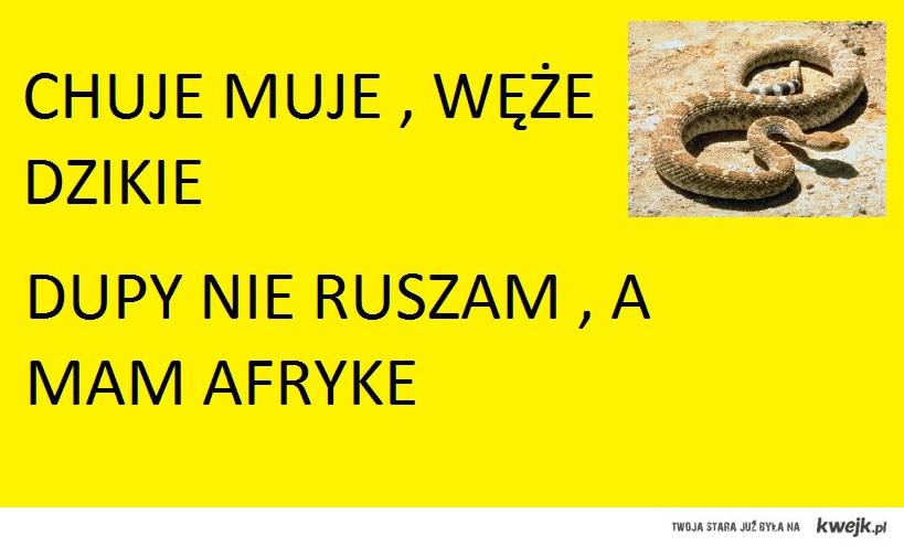 afryka w polsce