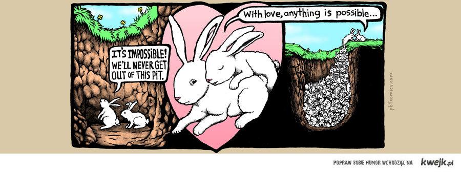 miłość czyni cuda