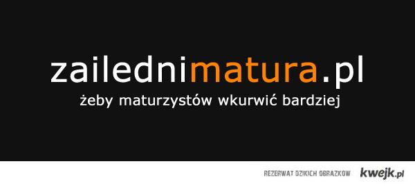 zailednimatura.pl