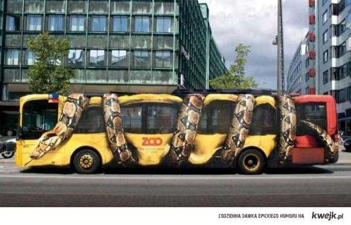 wąż reklama