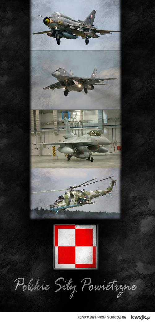 PolishAirForce