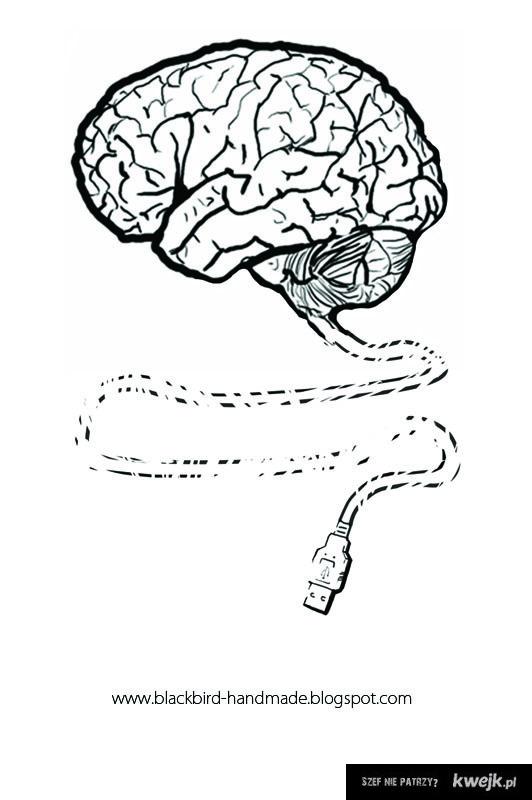 Brain USB