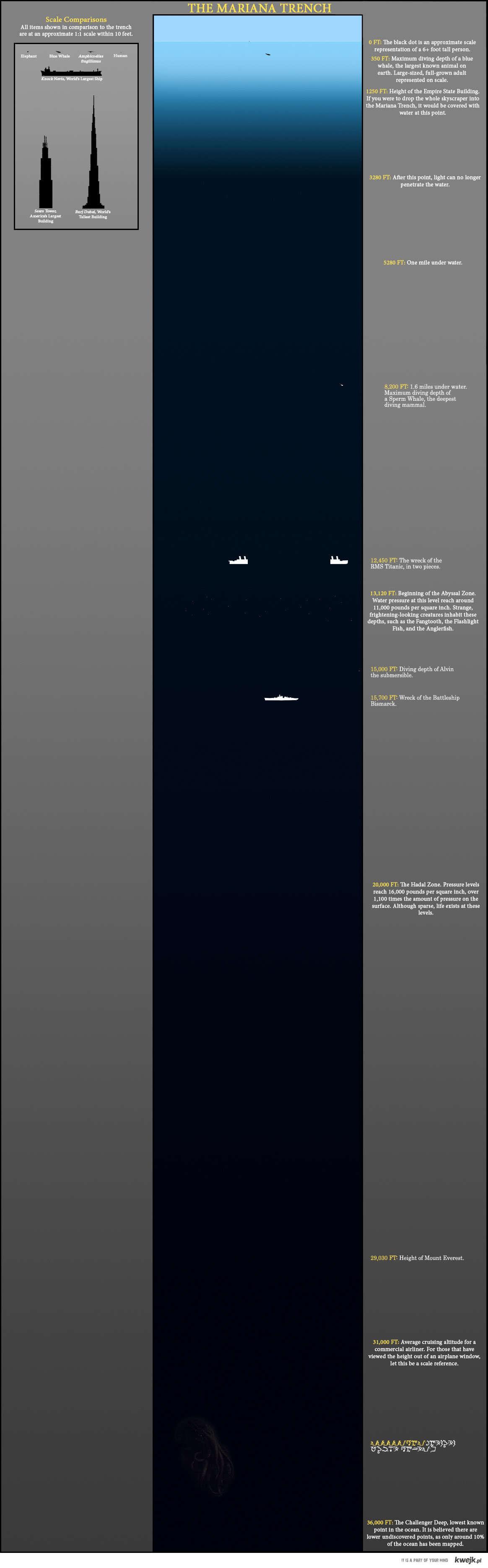 poszczegolne glebokosci rowu marianskiego z opisem
