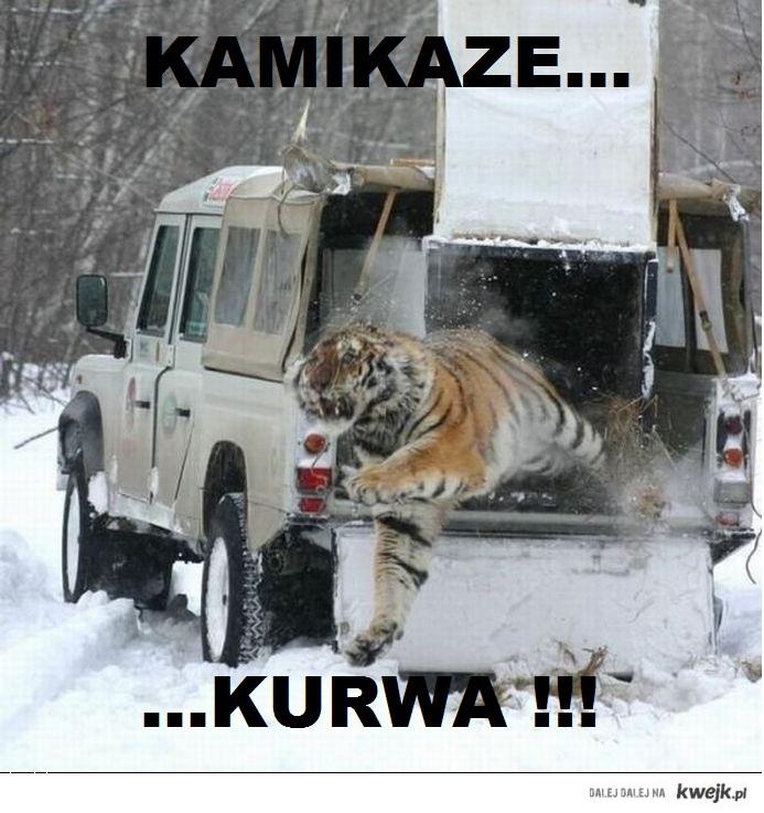 Kamikaze...