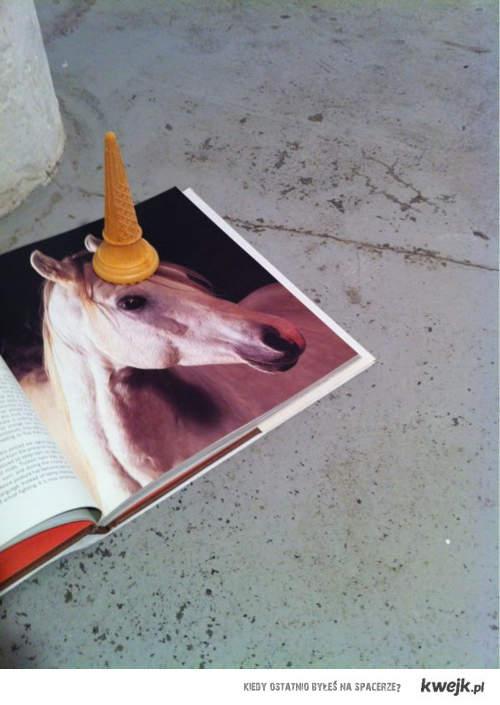 wafer unicorn