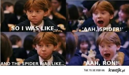 """""""Aaaa Spider!"""""""