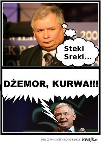 Steki Sreki...