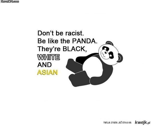 rasizm, panda