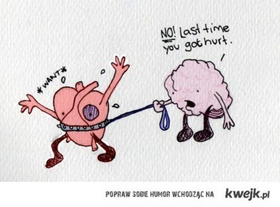 mozdzek i serducho