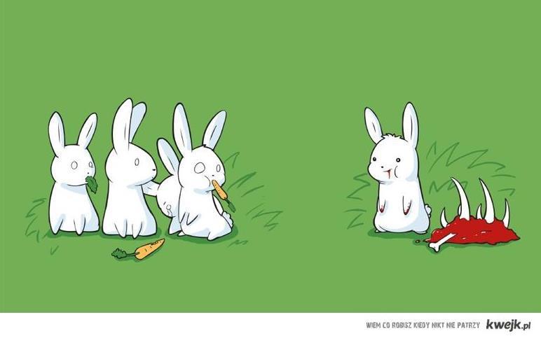 Rabbit - Hanibal