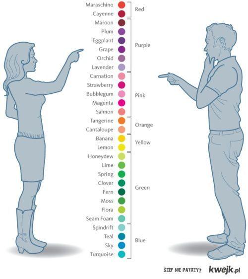 postrzeganie kolorów