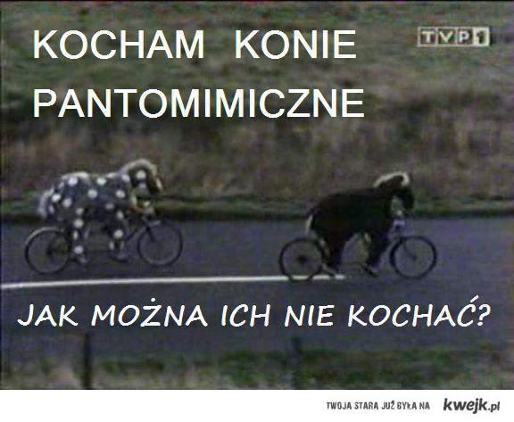 Konie Pantomimiczne