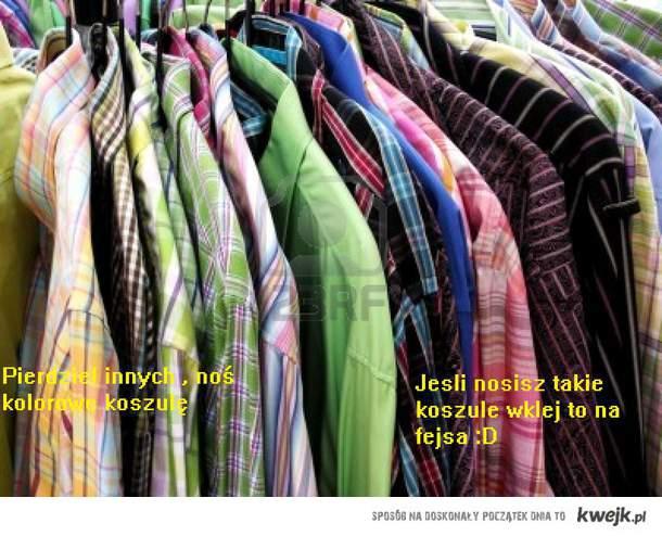 Kolorowe koszule ;))