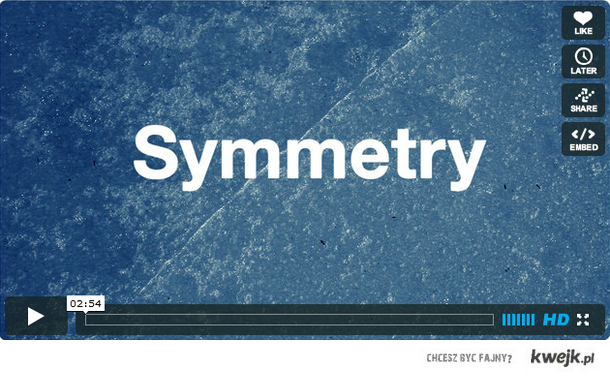 Everynone - Symmetry