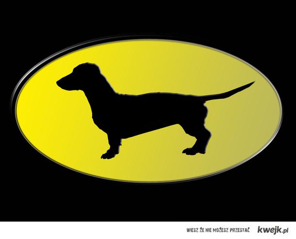 Zwierze na logo batmana