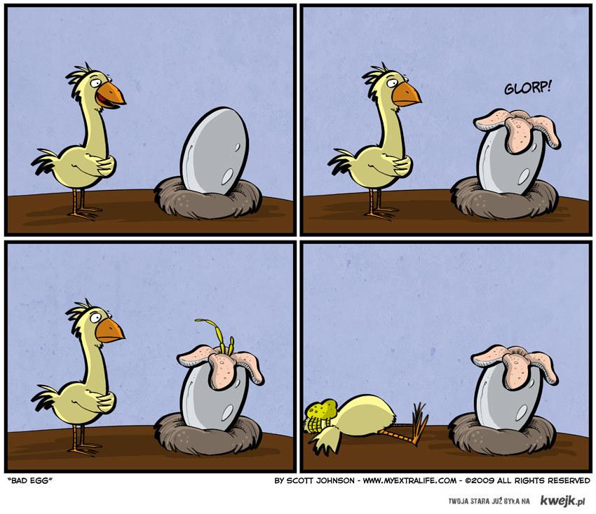Obcy kurczak