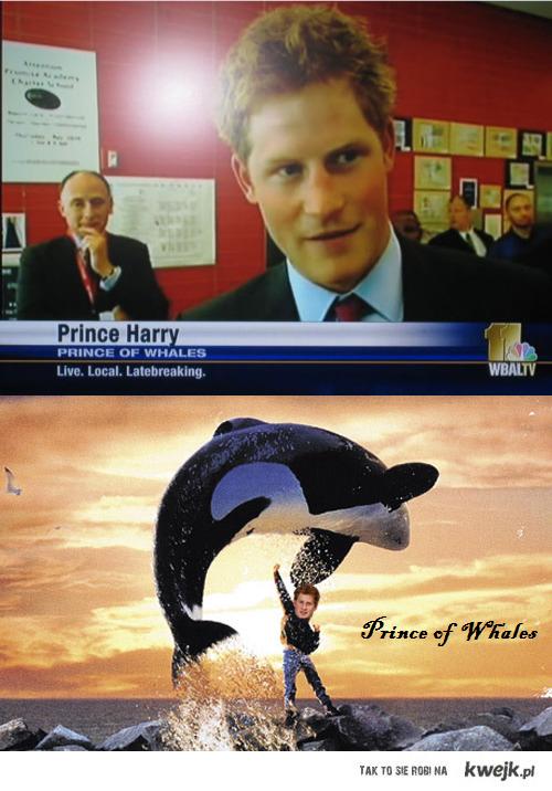 Książę Wielorybów