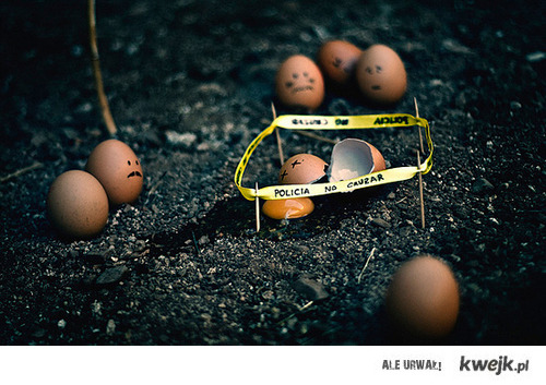 jajo, jajko, policja, śmierć