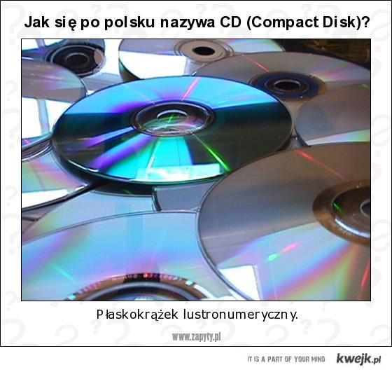 Jak po polsku nazywa się CD?