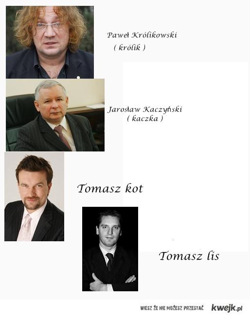 Same zwierzęta w tej Polsce...
