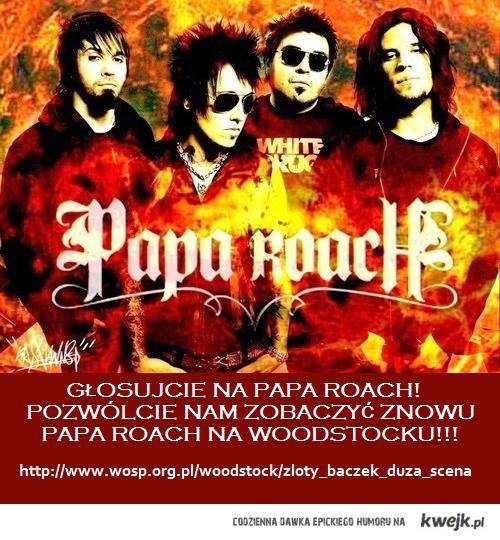 Papa Roach na Woodstocku!